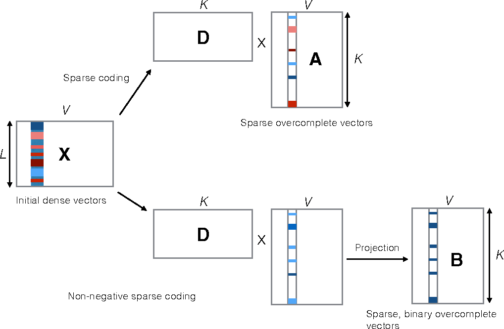 Figure 1 for Sparse Overcomplete Word Vector Representations