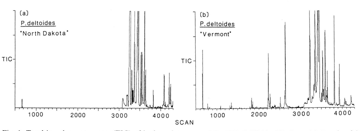 "Fig. 1. Total ion chromatograms (TIC) of bud exudate, scans 500-4300 (MU 11-33), from (a) Populus deltoides ""North Dakota"", typical of the P. deltoides exudates studied and (b) Populus deltoides ""Vermont"", an atypical exudate."