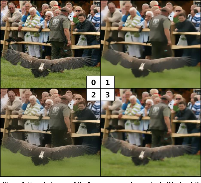 Figure 1 for Enhancing the Performance of Convolutional Neural Networks on Quality Degraded Datasets