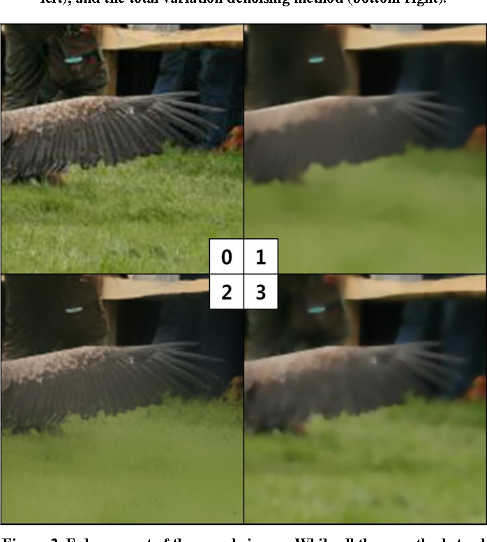 Figure 3 for Enhancing the Performance of Convolutional Neural Networks on Quality Degraded Datasets