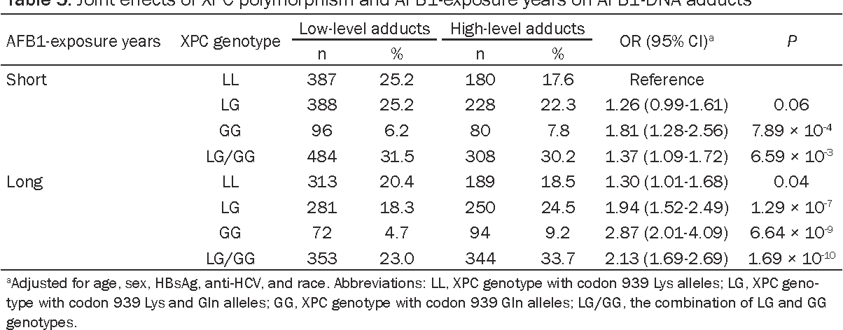 Table 5. Joint effects of XPC polymorphism and AFB1-exposure years on AFB1-DNA adducts