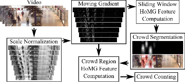 Figure 1 for Scene Invariant Crowd Segmentation and Counting Using Scale-Normalized Histogram of Moving Gradients (HoMG)