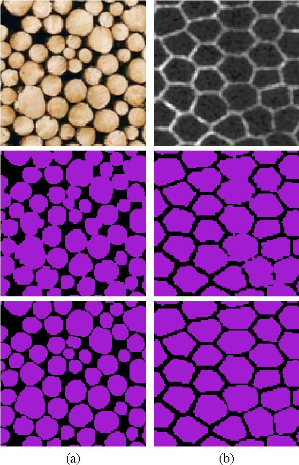 Figure 4 for Convexity Shape Constraints for Image Segmentation