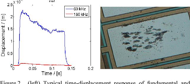 P1E-5 Understanding Ultrasound-Induced Aluminum Oxide Breakage