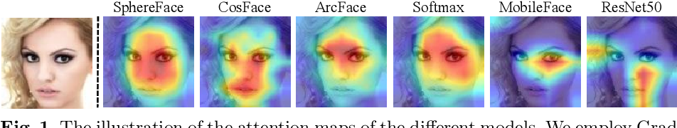 Figure 2 for Delving into the Adversarial Robustness on Face Recognition