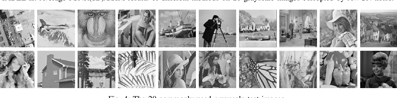 Figure 4 for NLH: A Blind Pixel-level Non-local Method for Real-world Image Denoising