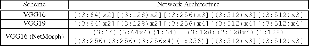 Figure 4 for Network Morphism