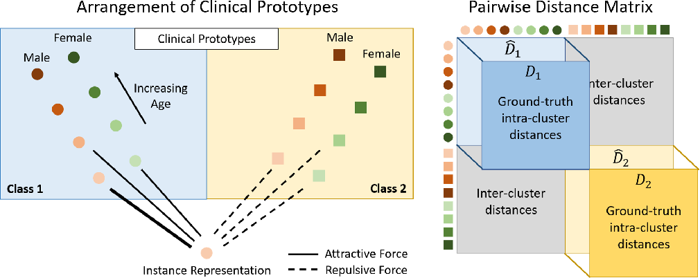 Figure 3 for DROPS: Deep Retrieval of Physiological Signals via Attribute-specific Clinical Prototypes