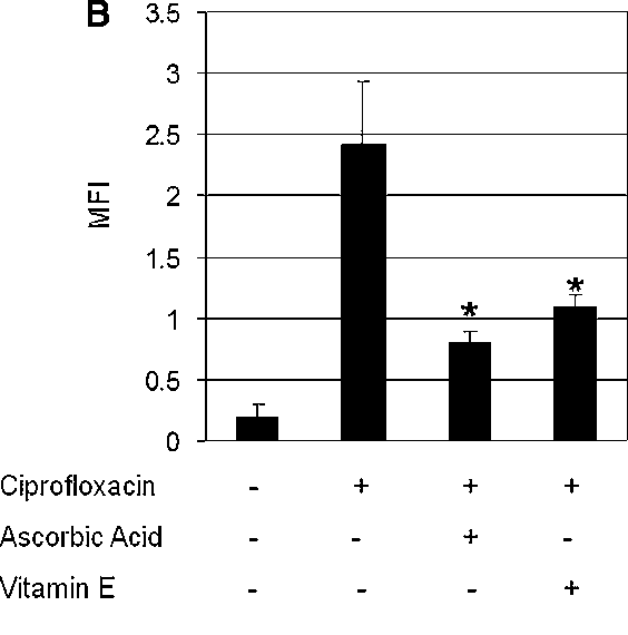 Ciprofloxacin-Induced Antibacterial Activity is Reversed by