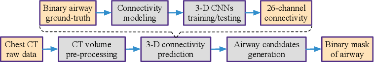 Figure 1 for AirwayNet: A Voxel-Connectivity Aware Approach for Accurate Airway Segmentation Using Convolutional Neural Networks