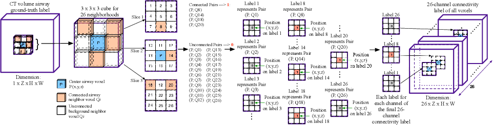 Figure 3 for AirwayNet: A Voxel-Connectivity Aware Approach for Accurate Airway Segmentation Using Convolutional Neural Networks