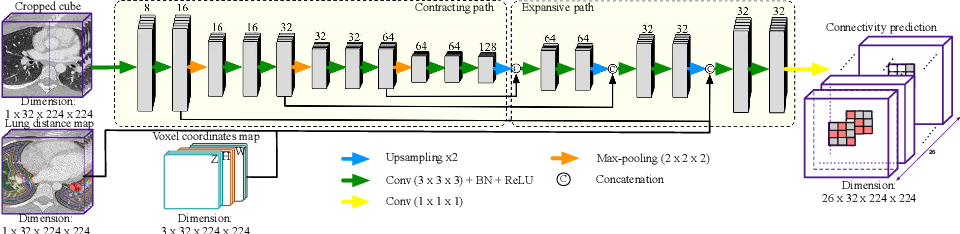 Figure 4 for AirwayNet: A Voxel-Connectivity Aware Approach for Accurate Airway Segmentation Using Convolutional Neural Networks