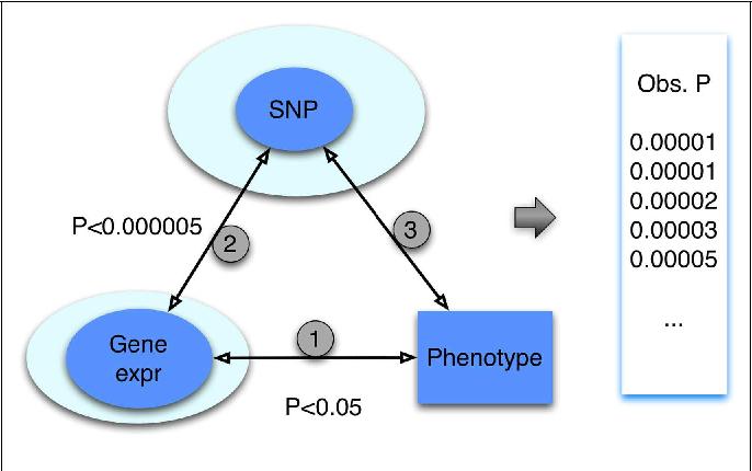 PDF] Integrative Genomics: Quantifying Significance of