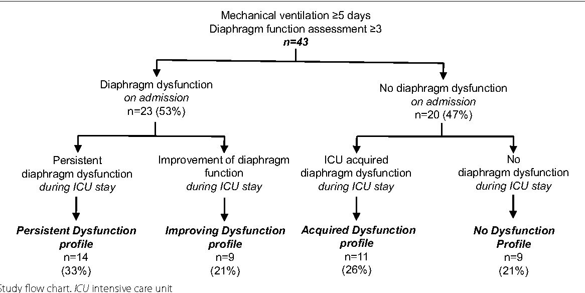 Patterns Of Diaphragm Function In Critically Ill Patients Receiving