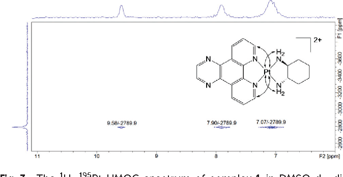 Fig. 3 The 1H–195Pt HMQC spectrum of complex 1 in DMSO-d6, displaying the correlations between the platinum centre and the protons from each ligand.