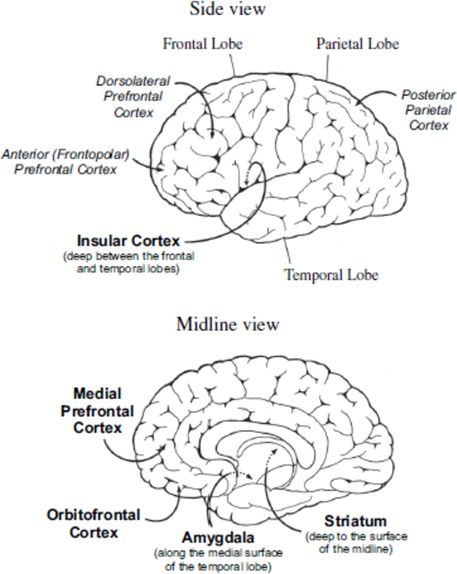 Figure 3 1 From Adaptive Emotion Based Decision Model For A Social