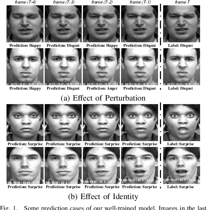 Figure 1 for Semantic Neighborhood-Aware Deep Facial Expression Recognition