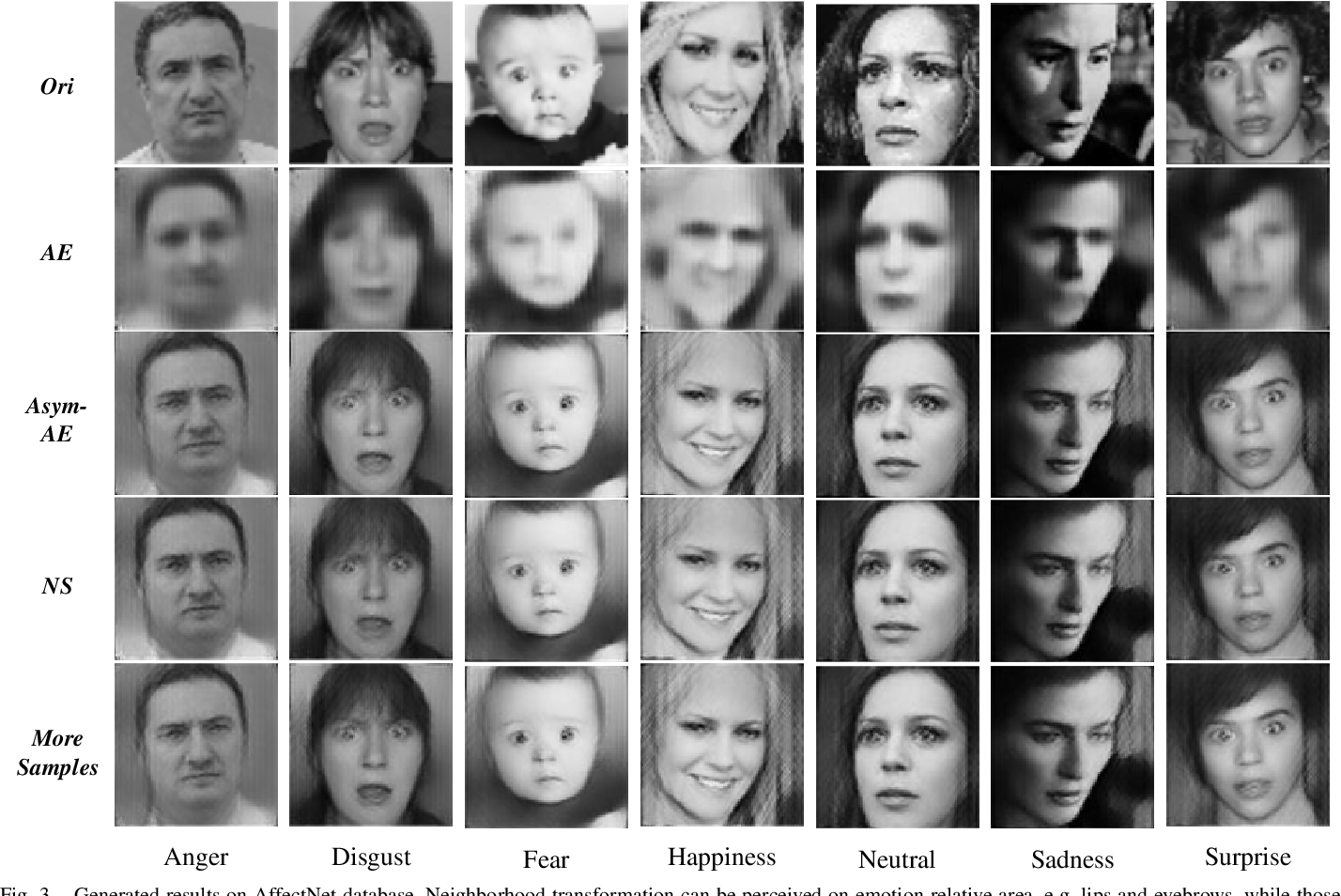 Figure 3 for Semantic Neighborhood-Aware Deep Facial Expression Recognition