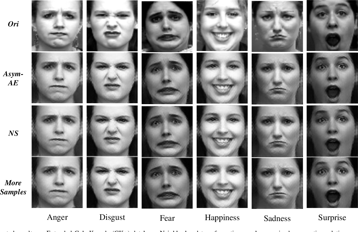 Figure 4 for Semantic Neighborhood-Aware Deep Facial Expression Recognition