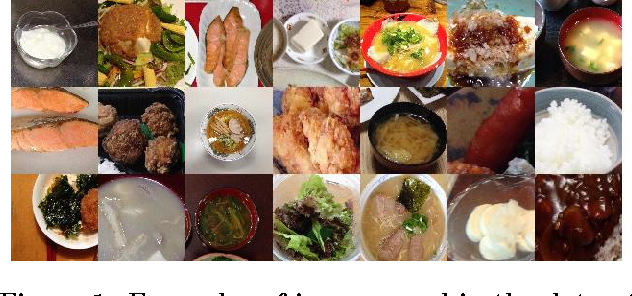 Figure 1 from food detection and recognition using convolutional figure 1 examples of images used in the dataset forumfinder Choice Image