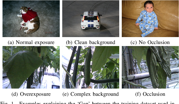 Figure 1 for Few-Shot Object Detection in Real Life: Case Study on Auto-Harvest