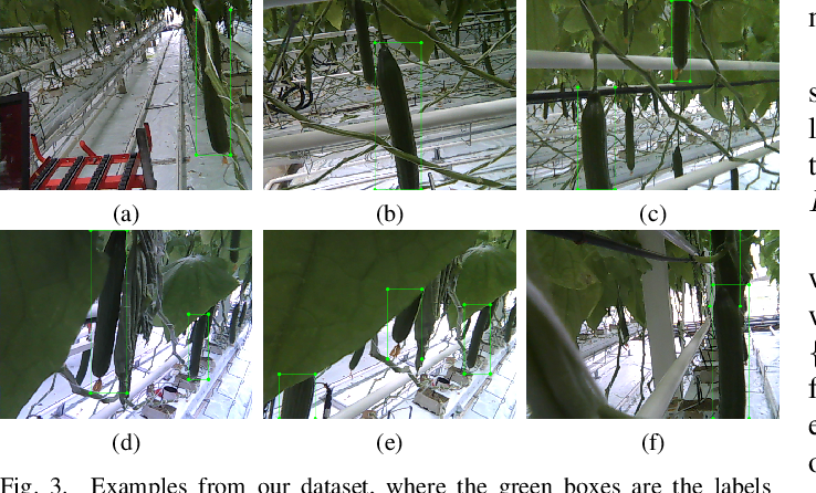 Figure 3 for Few-Shot Object Detection in Real Life: Case Study on Auto-Harvest