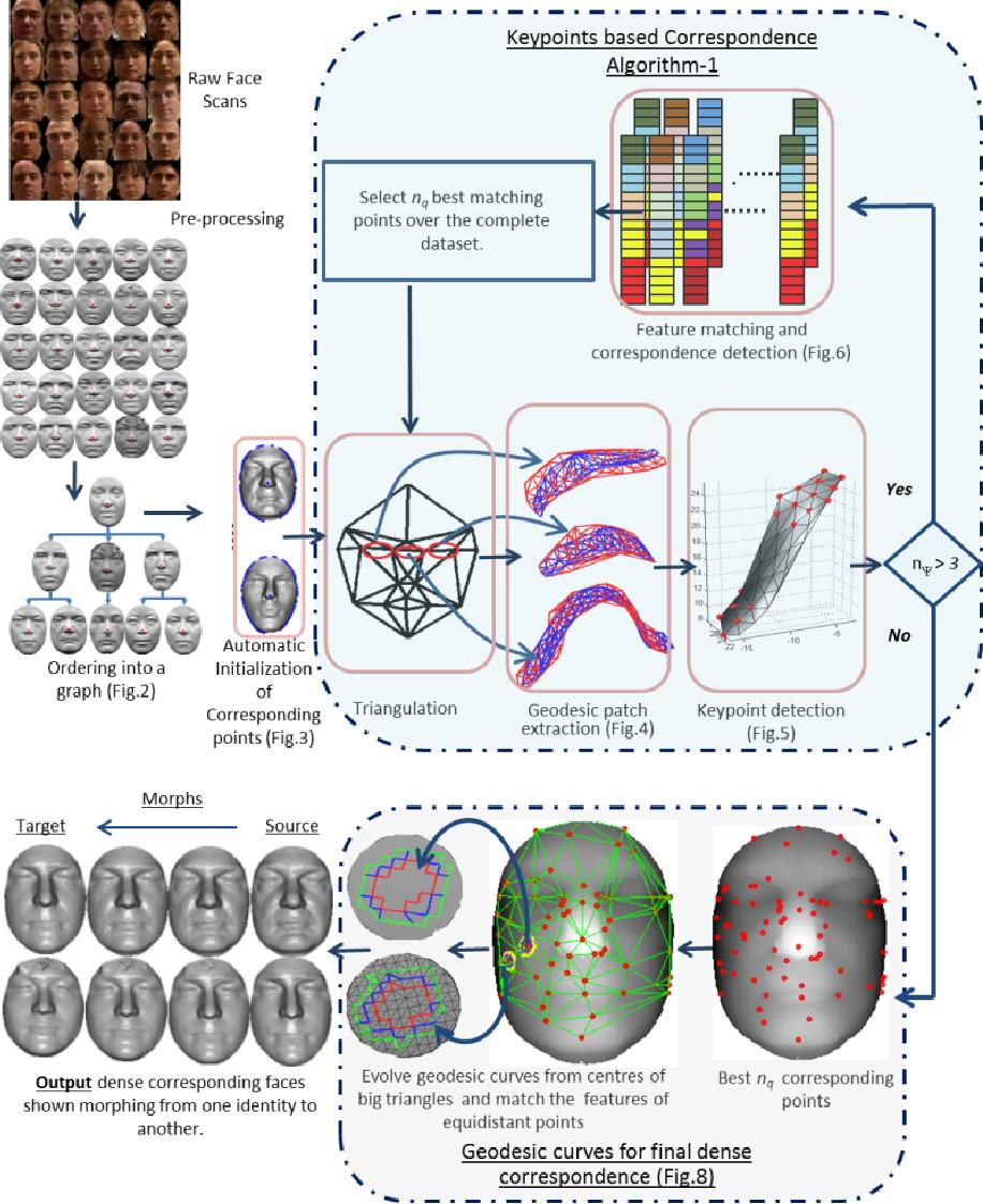Figure 1 for Dense 3D Face Correspondence
