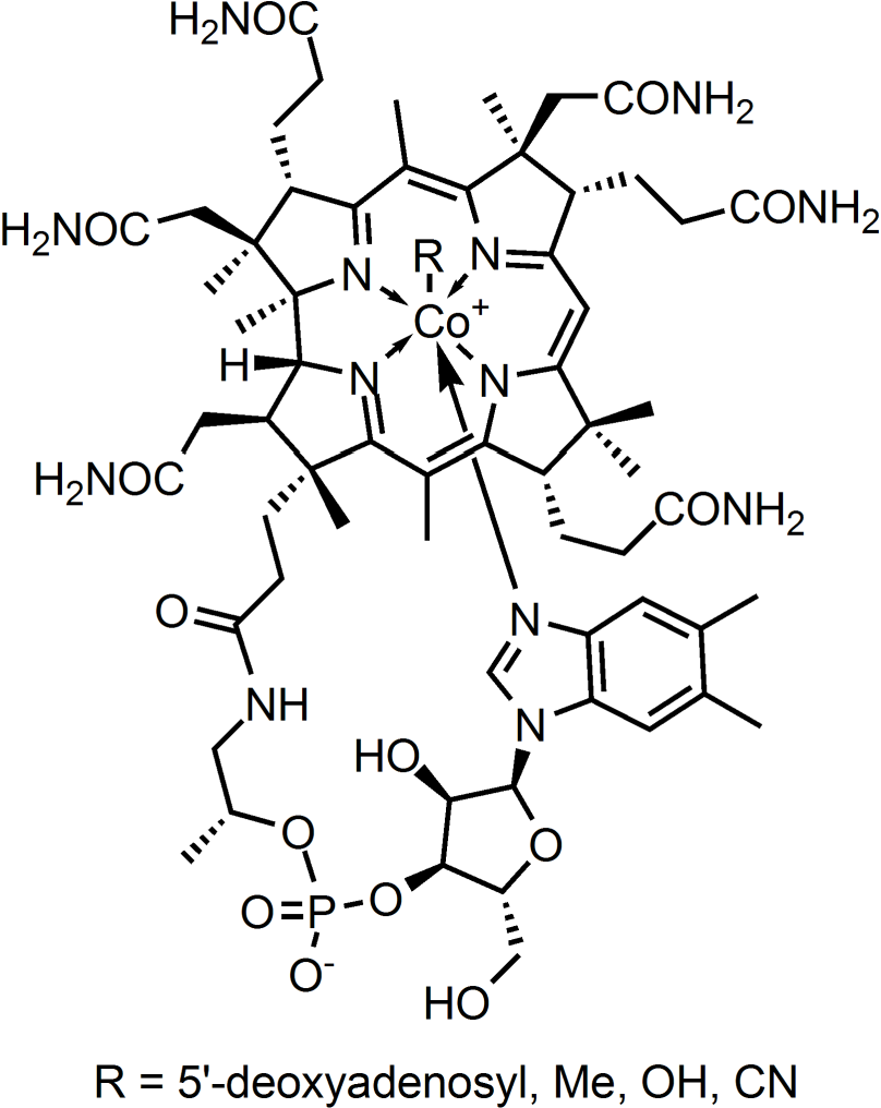 Figure 4.1: Chemical structure of cobalamin (vitamin B12). The central cobalt atom is bound to four nitrogen atoms in a planar tetrapyrrole ring. The lower cobalt axial ligand forms a loop with the tetrapyrole ring through a dimethylbenzimidazole ribonucleotide moiety. The upper axial ligand can vary. Heat-stable cyanocobalamin is obtained by addition of a sub-lethal concentration of potassium cyanide to a cobalamin-producing bacterial culture.