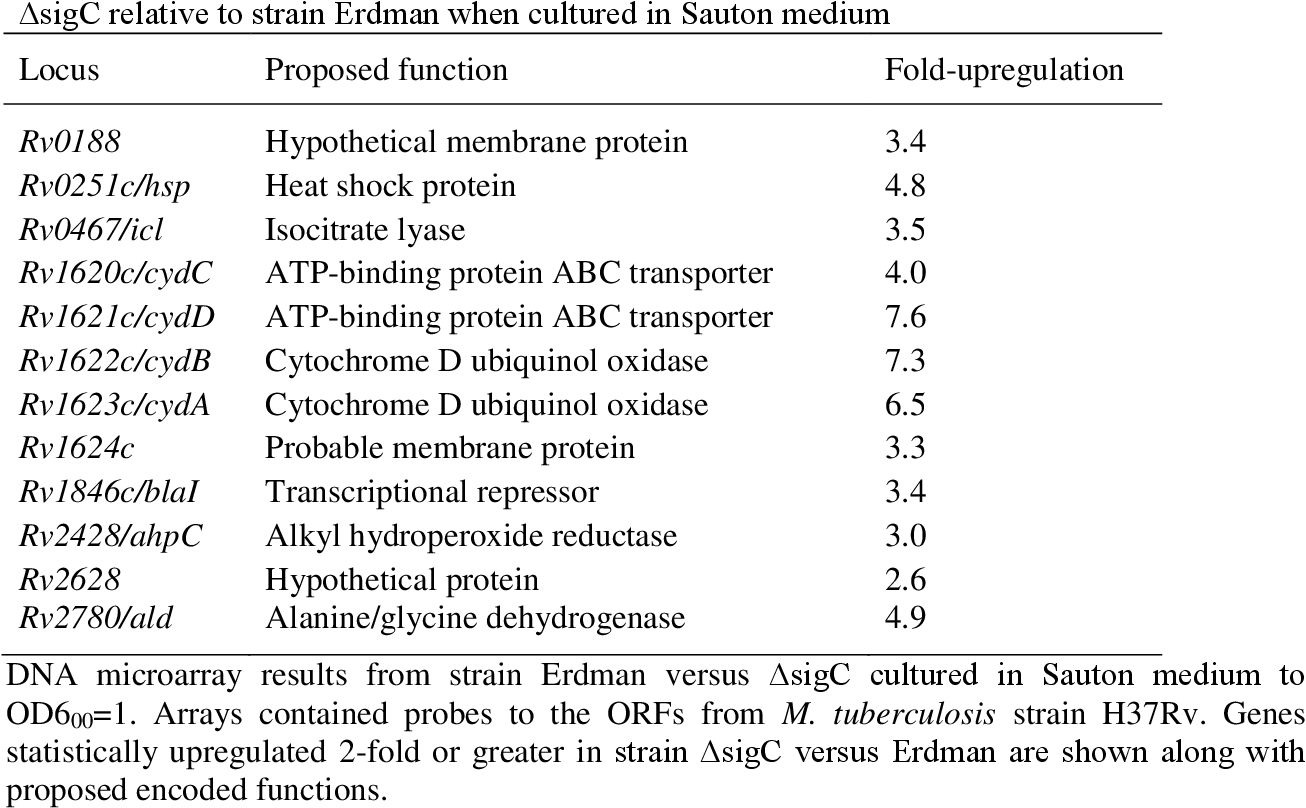 Table 3.2: Genes transcriptionally elevated > 2-fold in M. tuberculosis strain ΔsigC relative to strain Erdman when cultured in Sauton medium