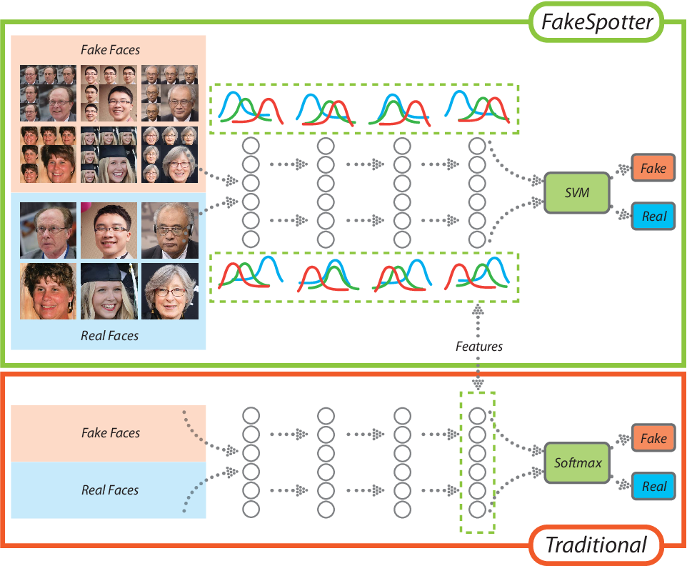 Figure 3 for FakeSpotter: A Simple Baseline for Spotting AI-Synthesized Fake Faces