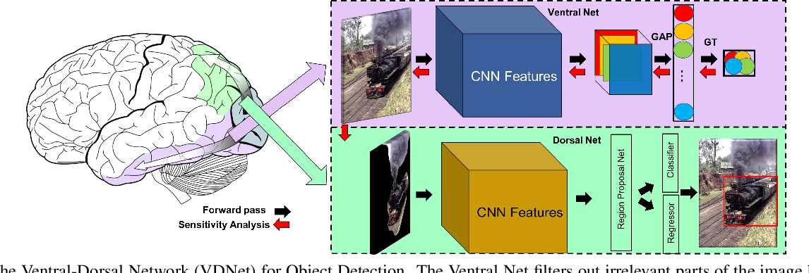 Figure 3 for Ventral-Dorsal Neural Networks: Object Detection via Selective Attention