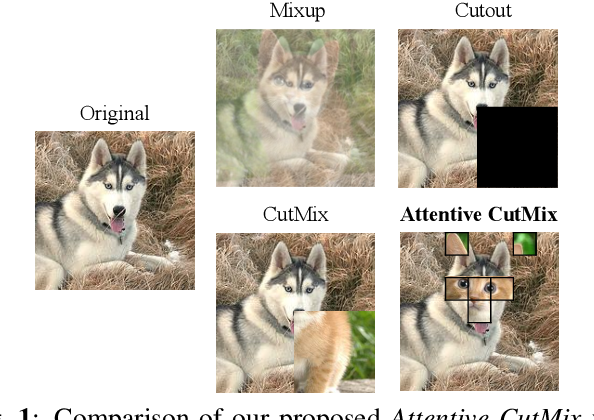 Figure 1 for Attentive CutMix: An Enhanced Data Augmentation Approach for Deep Learning Based Image Classification