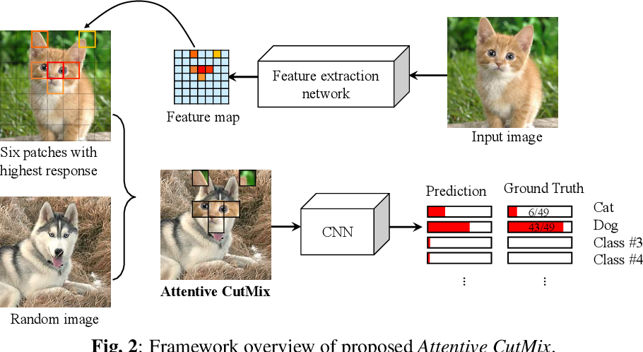 Figure 3 for Attentive CutMix: An Enhanced Data Augmentation Approach for Deep Learning Based Image Classification