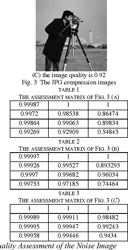 TABLE 1 THE ASSESSMENT MATRIX OF FIG. 3 (A)