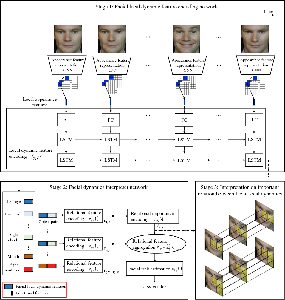 Figure 1 for Facial Dynamics Interpreter Network: What are the Important Relations between Local Dynamics for Facial Trait Estimation?