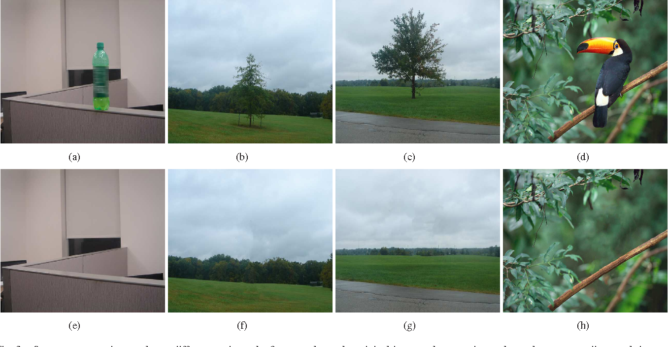 Figure 3 for Automatic Objects Removal for Scene Completion