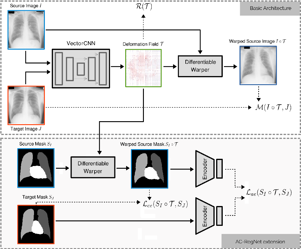 Figure 1 for Learning Deformable Registration of Medical Images with Anatomical Constraints