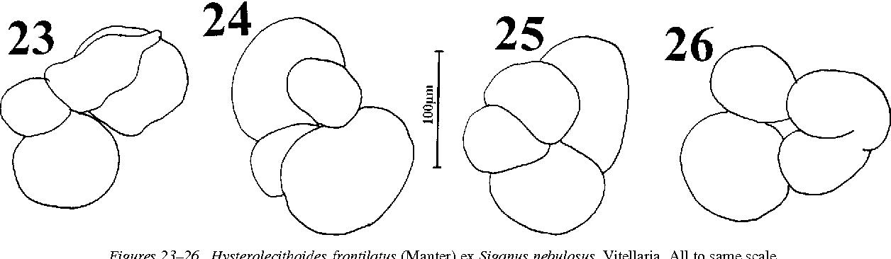 figure 23–26