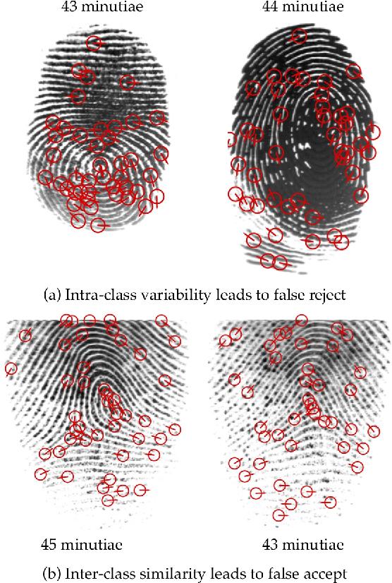 Figure 3 for Learning a Fixed-Length Fingerprint Representation