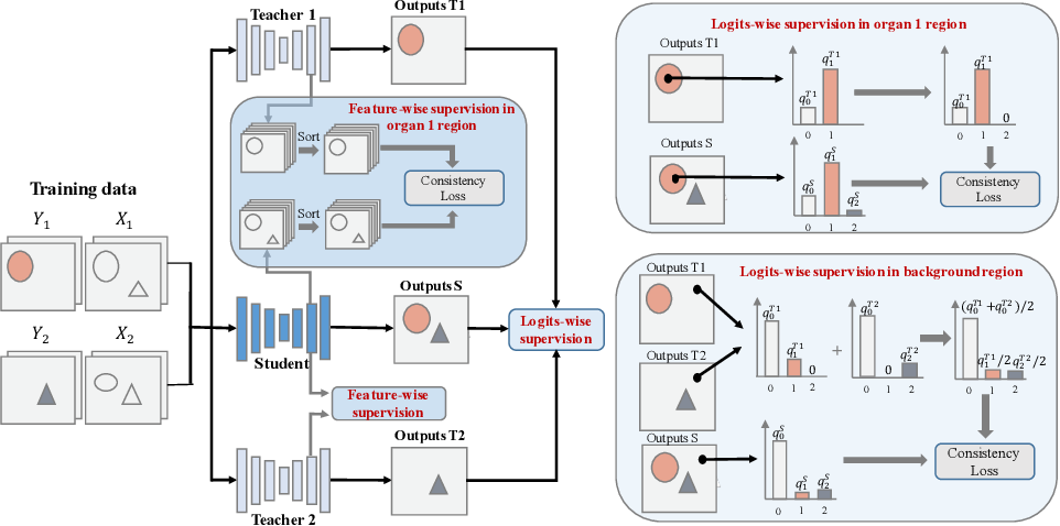 Figure 3 for MS-KD: Multi-Organ Segmentation with Multiple Binary-Labeled Datasets