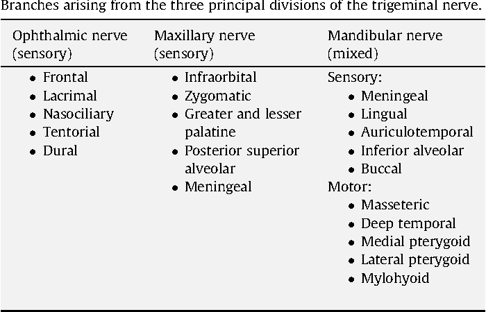 The Trigeminal Nerve An Illustrated Review Of Its Imaging Anatomy