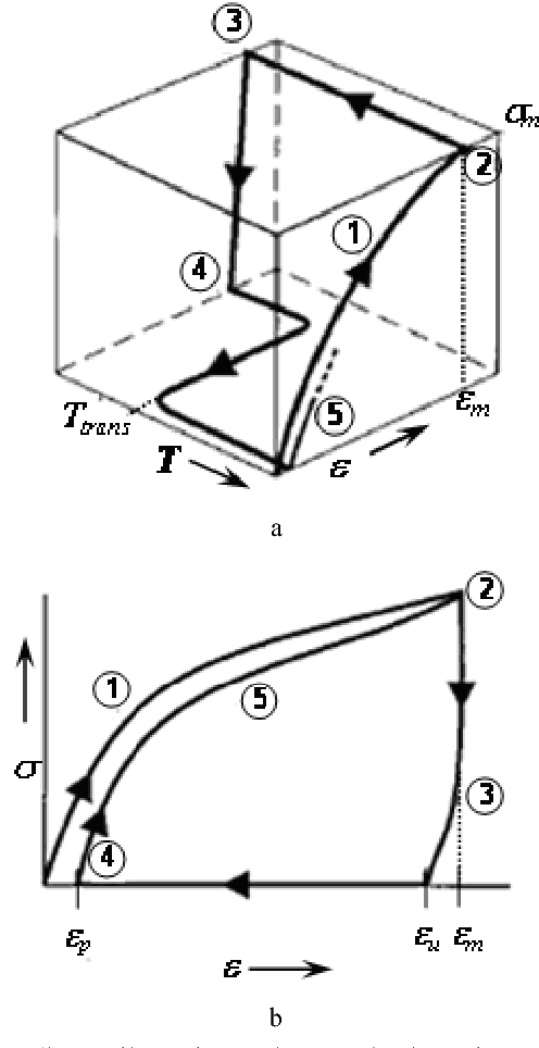 Figure 2 from Shape Memory Properties of Poly(ε-Caprolactone) Based