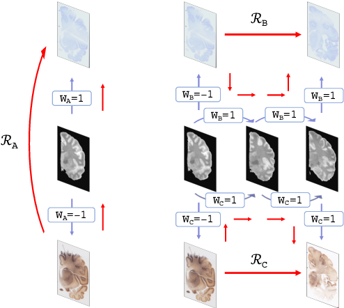 Figure 2 for Robust joint registration of multiple stains and MRI for multimodal 3D histology reconstruction: Application to the Allen human brain atlas