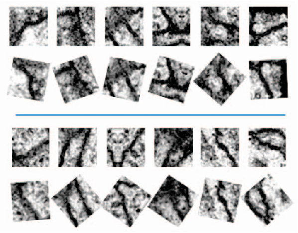 Figure 3 for TI-POOLING: transformation-invariant pooling for feature learning in Convolutional Neural Networks