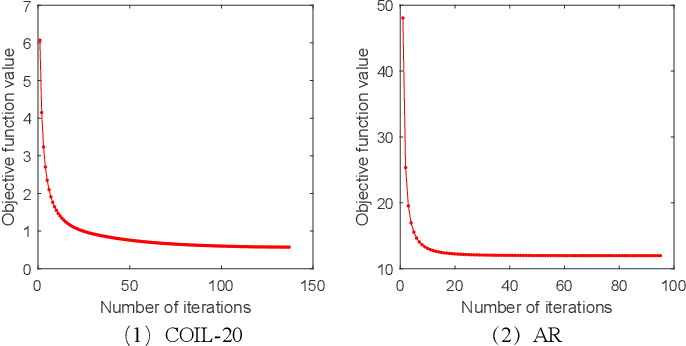 Figure 4 for Transition Subspace Learning based Least Squares Regression for Image Classification