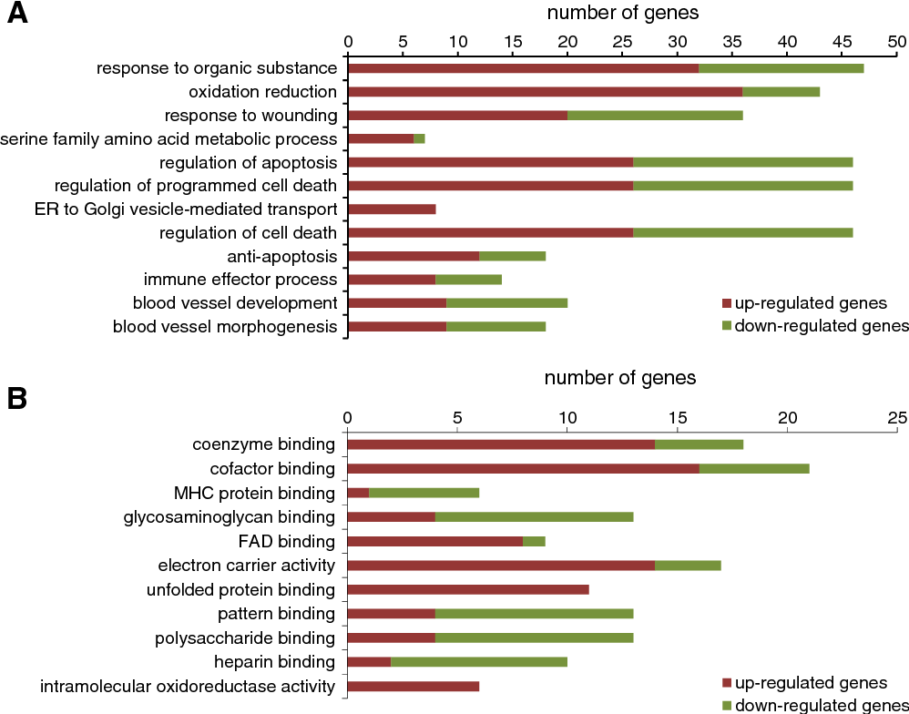 Fig. 2. Identification of overrepresented annotation terms. Gene-term enrichment analysis ba differentially expressed genes using the DAVID functional annotation chart tool. A. Biological p tions with an EASE scoreb0.01 are shown.