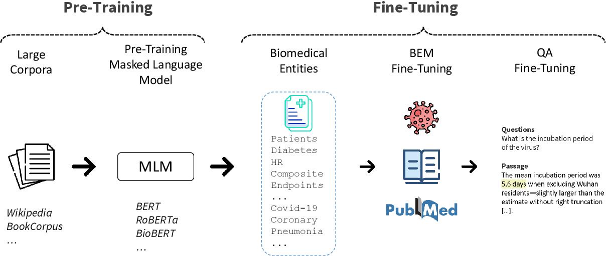 Figure 3 for Boosting Low-Resource Biomedical QA via Entity-Aware Masking Strategies