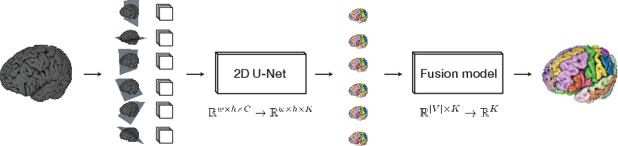 Figure 1 for One Network to Segment Them All: A General, Lightweight System for Accurate 3D Medical Image Segmentation