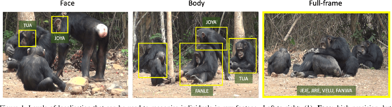 Figure 1 for Count, Crop and Recognise: Fine-Grained Recognition in the Wild