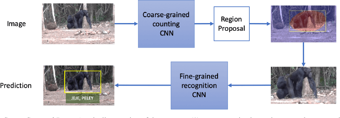 Figure 2 for Count, Crop and Recognise: Fine-Grained Recognition in the Wild